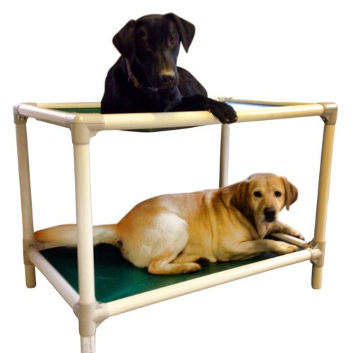 Kuranda Dog Bunk Beds Therian