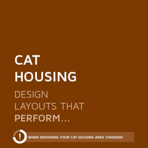 Cat Housing / Enclosures